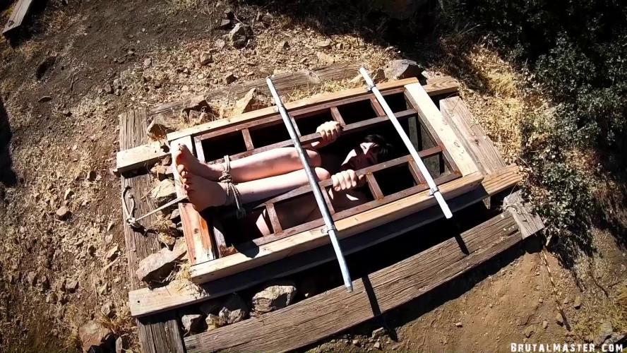 BDSM BrutalMaster - Lita Lecherous - Going InTo The Box