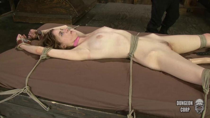 BDSM The True Submissive part 2