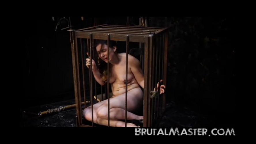 BDSM BrutalMaster - Lilah Rose - Throw In The Towel Two