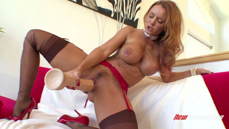 Fisting and Dildo Janet Mason from MILFs & Their Toys
