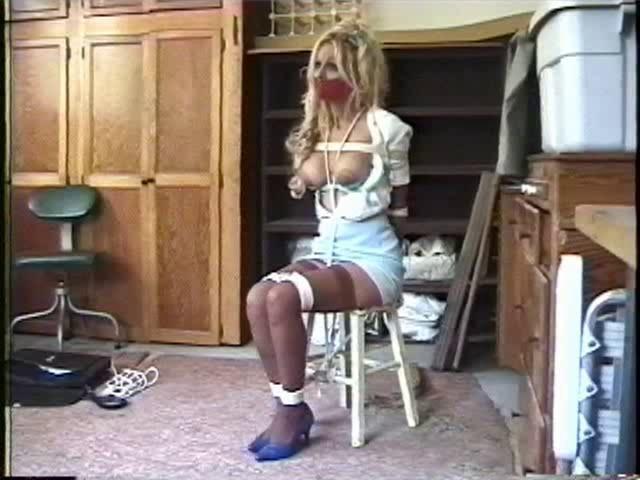 BDSM Harmony Concepts - The Misadventures of Holly Harmony