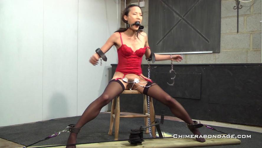 BDSM Magnificent 50 Clips ChimeraBondage. Part 4.