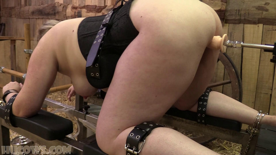 BDSM Fucked And Sucked