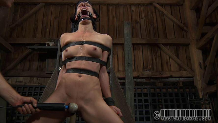 BDSM Whiny Bitch Part 2  - Elise Graves