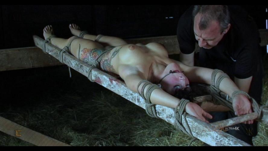 BDSM I Hate Bugs Renderfiend HD