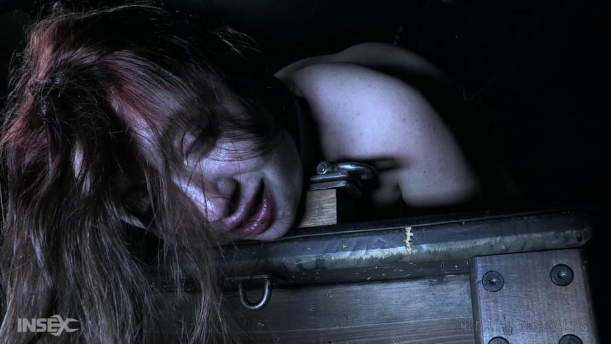 BDSM Misbehaving Part 2  - Brie Haven