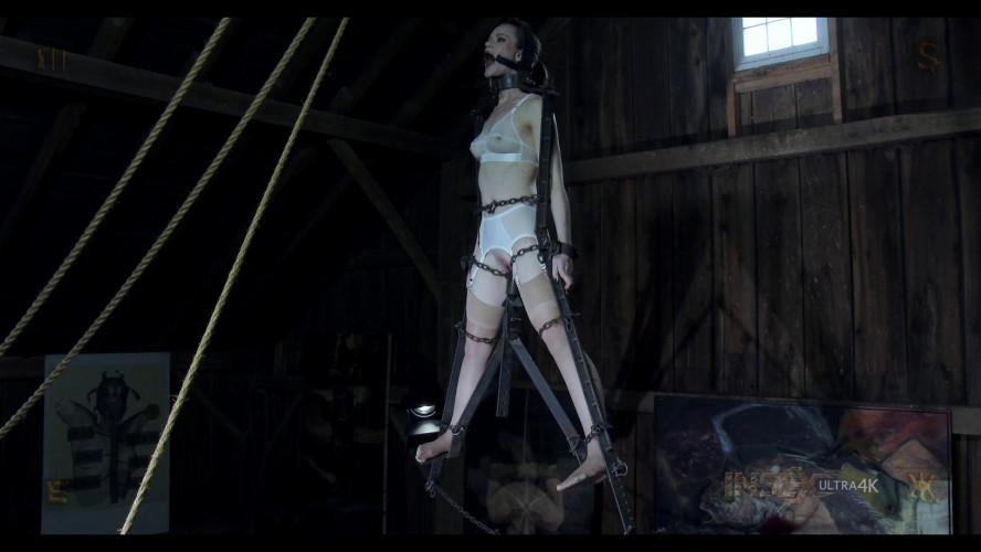 BDSM Hybristophilia: Surrealism episode 4