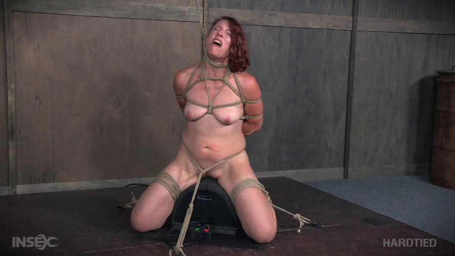 BDSM Kel Bowie, Matt Williams