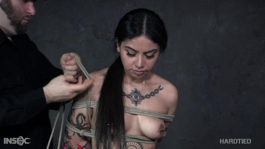 BDSM Rose Darling hard tied