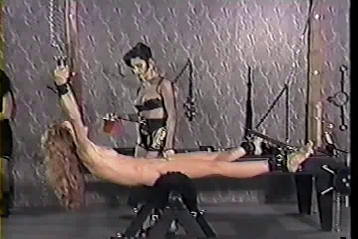 BDSM Disciplined