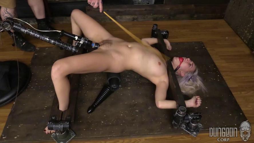 BDSM Cadence Lux Bondage