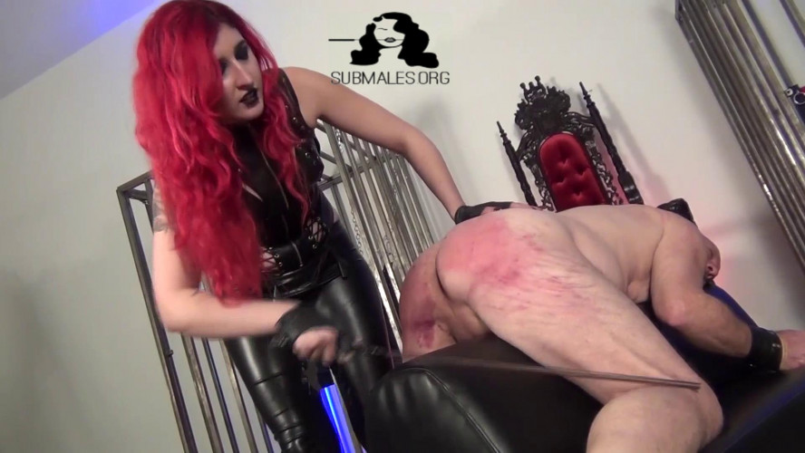 Femdom and Strapon DomNation - Mistress Synful Pleasure - Relentless Agony