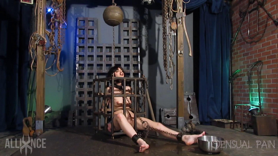 BDSM Caged Predicaments