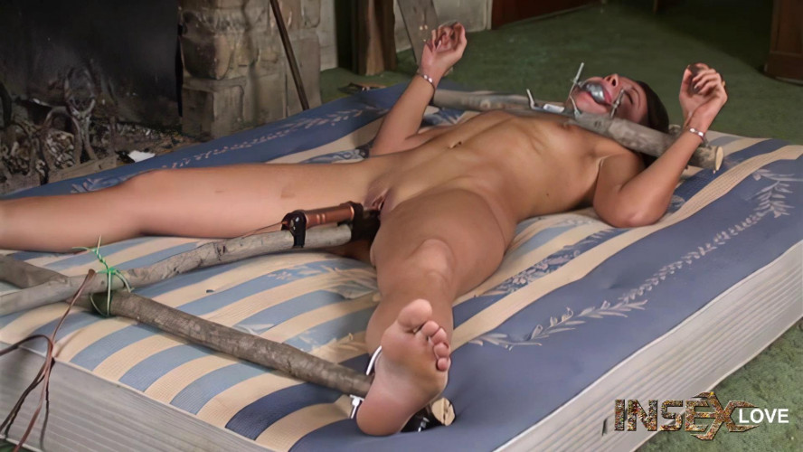 BDSM The Cabin