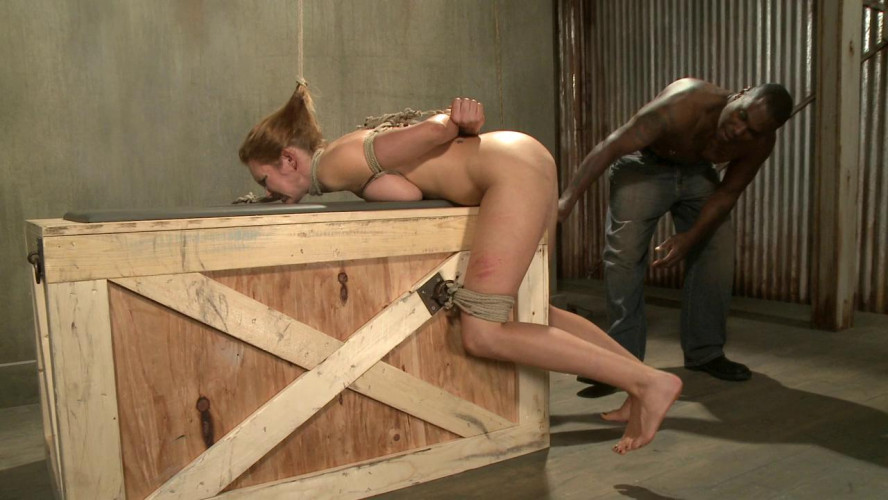 BDSM Fucked Silly by Jack Hammer