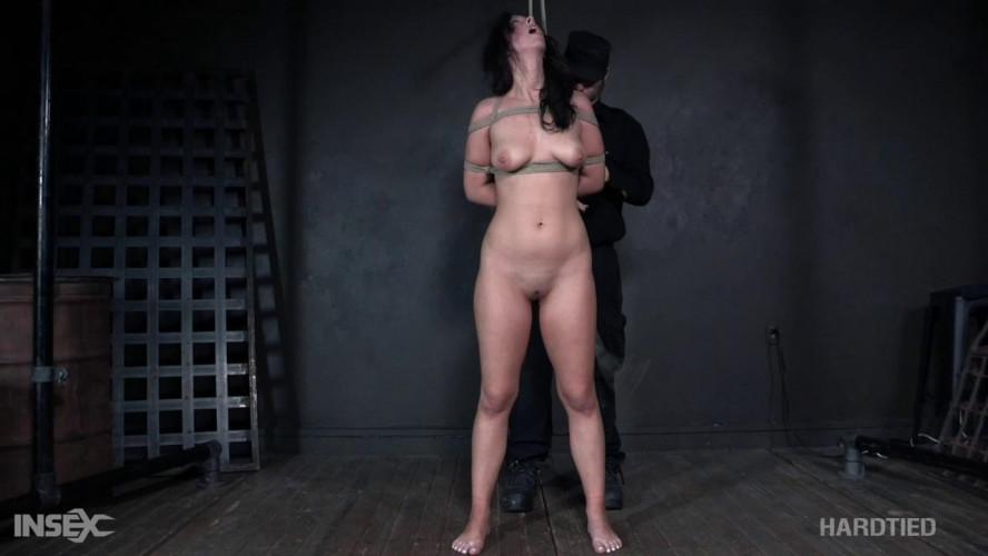 BDSM Ohh My! Jackie Ohh