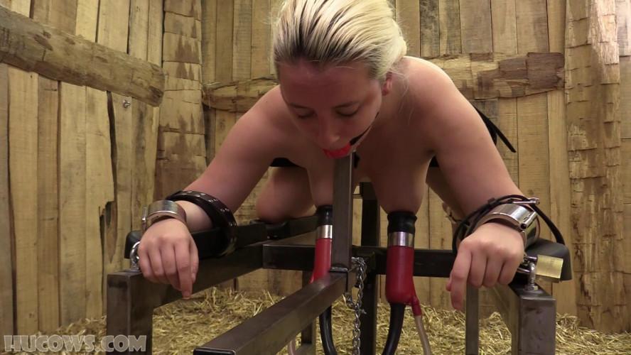 BDSM Vina – spanking results!