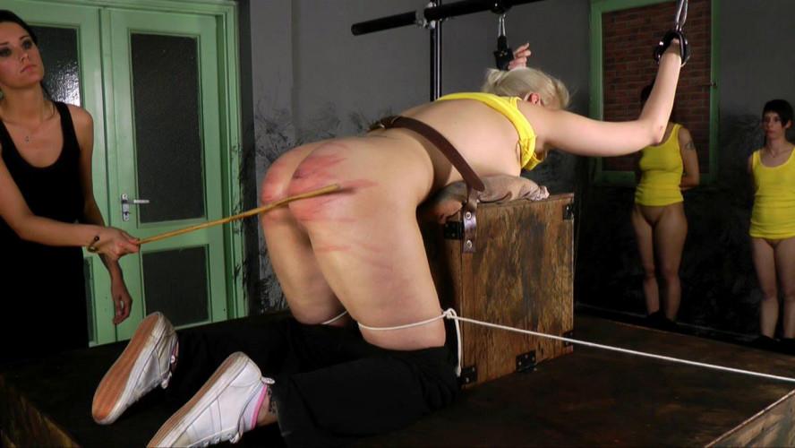 BDSM Rehabilitation Institute