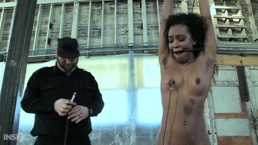 BDSM Bdsm HD Porn Videos Ransom