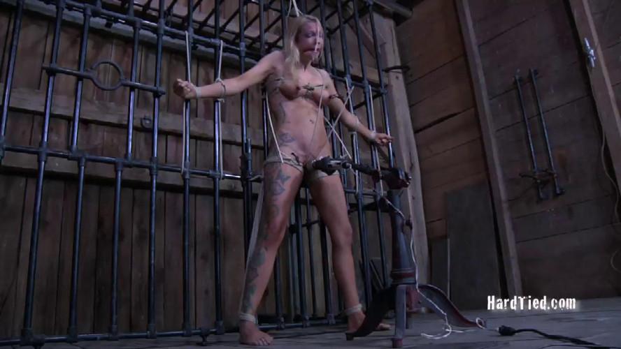 BDSM Barn Whore