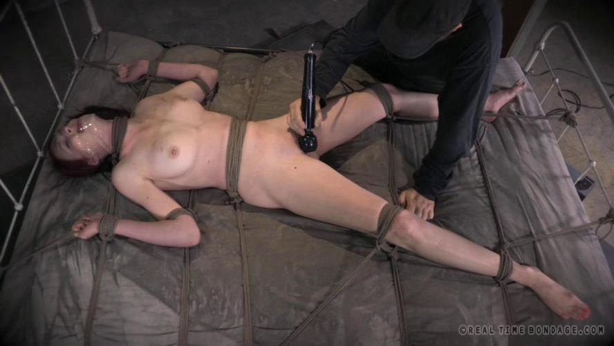 BDSM Ashley Lane Cunt Puppy, Part 3