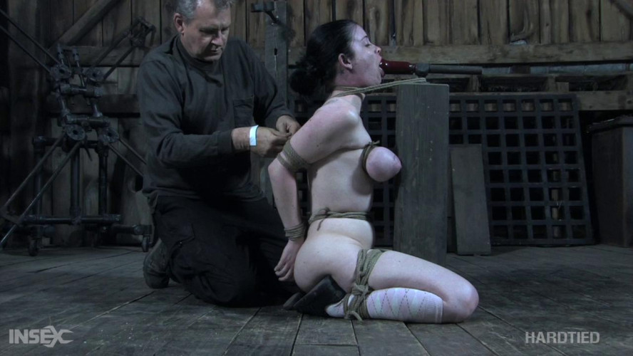 BDSM Getting Ahead - Sybil Hawthorne