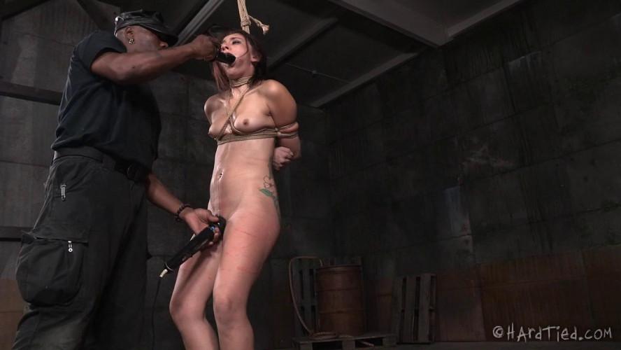 BDSM Amazing Mandy Muse Gets Rough Bondage