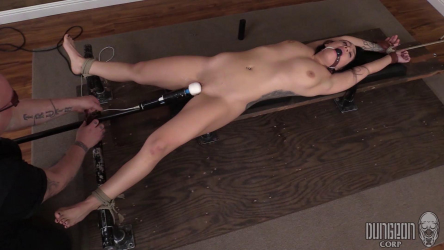 BDSM Punishments and Pleasures Charlie Wolf