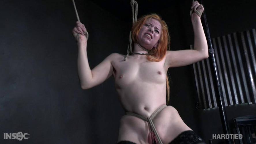 BDSM Hardtied - Peach Pi