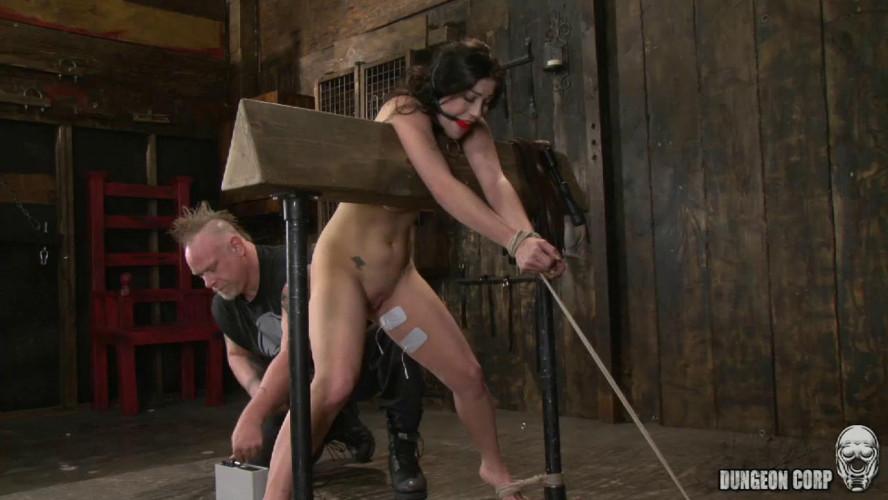 BDSM The Grand Tour of Pain part 2