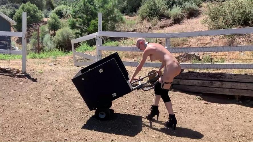 BDSM BrutalMaster - Greyhound - The Humiliation Box