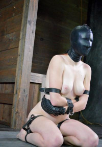 Whipped,Bound And Boxed