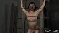 Elise Graves Tied