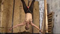 Brendasbound – Hanging Kimmy