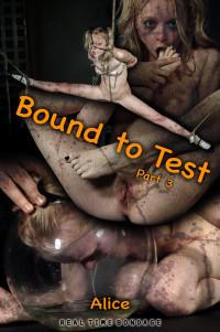 Alice – Bound To Test Part 3 (2019)