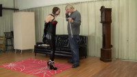 Ariel Marie – Blind Date Dom Bound And Gagged