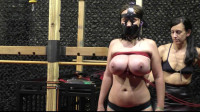 Breastslave S. Animal Play Bound Con Vol. 3