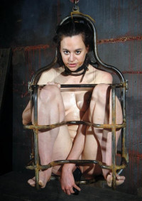 Real Pain And Humiliation Area