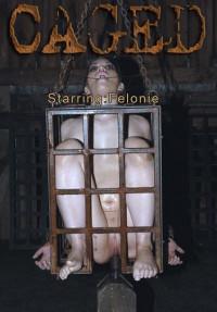 Felonie Caged BONUS , HD 720p