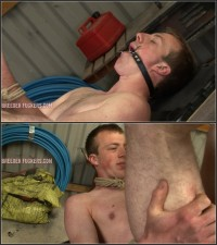 Bound Spread-eagle And Cock Clamped, Arse Flogged, Fucked With A Vibrator