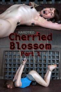 Cherried Blossom Part 1 – Blossom- London River , HD 720p