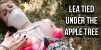 Lea Tied Under The Apple Tree
