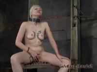 The Interrogation Safira Angel