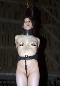 Felonie Caged Hard