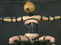 Insex – 411 2nd Day In The Chair (Live Feed From May 18, 2002) RAW