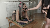 HD Bdsm Sex Videos Tindra  Dog Cage