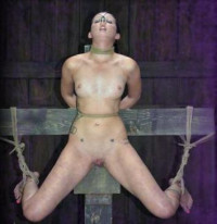 Hardtied – Sep 21, 2011 – Hailey Young