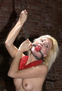 The BDSM Prostitute