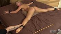Animal Training My Whims, For My Enjoyment Part ASS TO MOUTH