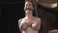 Stocked Slut Part One , Sybil Hawthorne